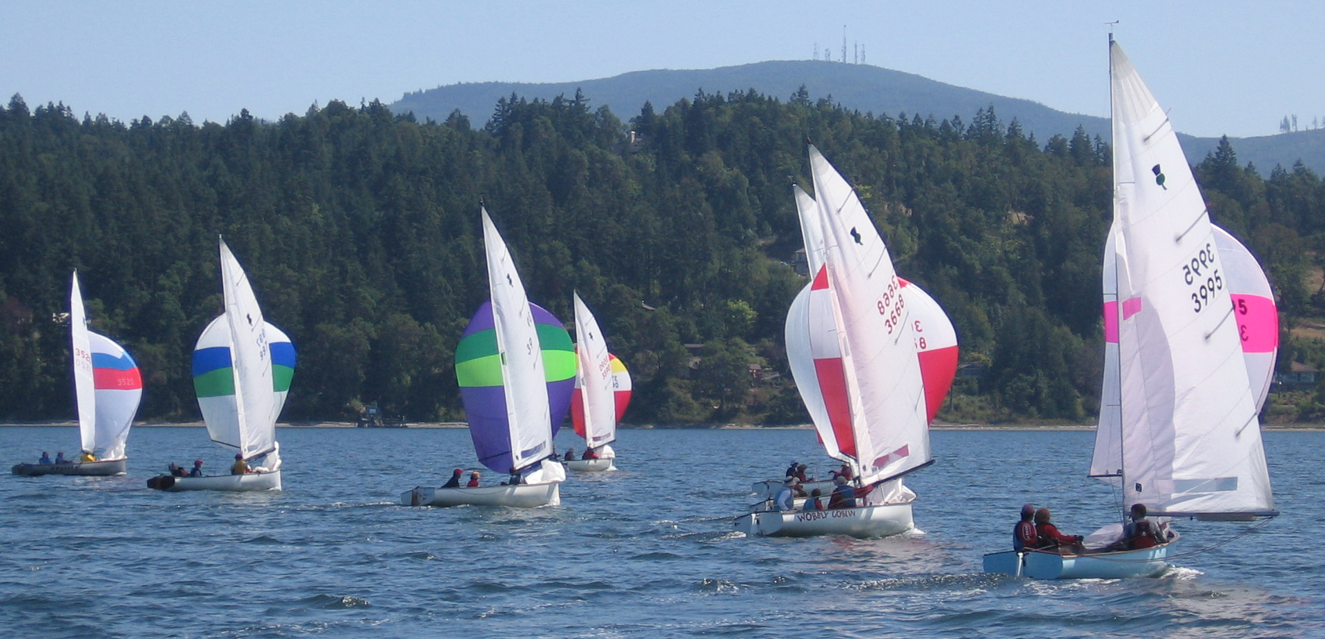 sequim bay thistle regatta august 2009 008a